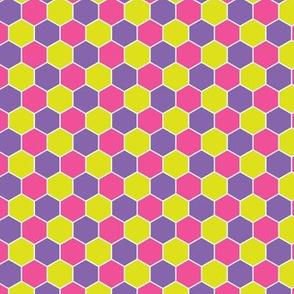 Honeycomb Multicolor Spring Crocus