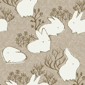 Arctic Hare  {Fawn}