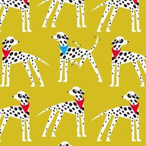 Dalmation Nation (yellow)