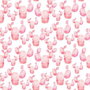 Pink watercolor cactus