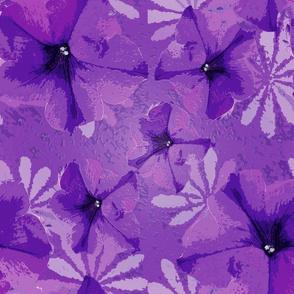 Pansies & Daisies Petals