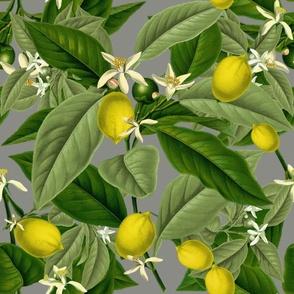 Lemon Botanical ~ Earl Grey ~ Faux Canvas