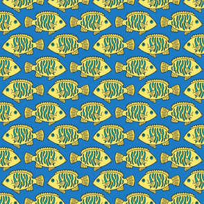 Tropical Fish in Yellow and Blue