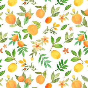 Orange-peach garden