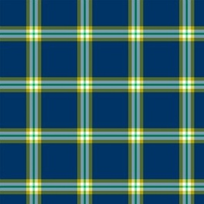 Mark Scot Plaid ©Julee Wood