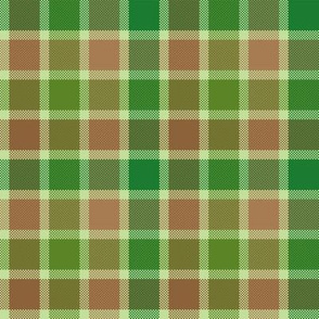 Earth Scot Plaid ©Julee Wood