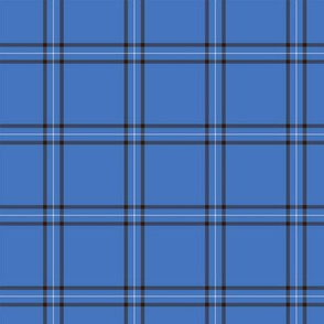 Blue Scot Plaid ©Julee Wood