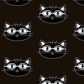cat in noir