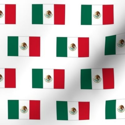 It is a picture of Mexican Flag Printable for outline
