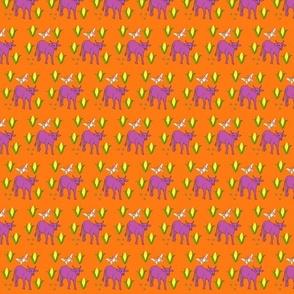 Nguni Cows n Corn