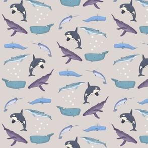 Whales Grey