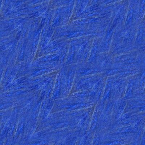 Blue Butterfly Wing Texture