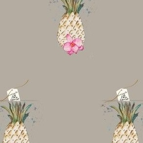 PINEAPPLE 10 CENTS  PIGEON GREY