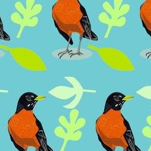 robins on blue