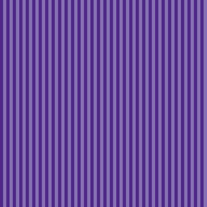 narrow stripes in royal purple