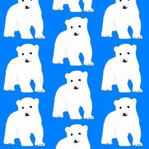 Polar Bear Cub on Blue