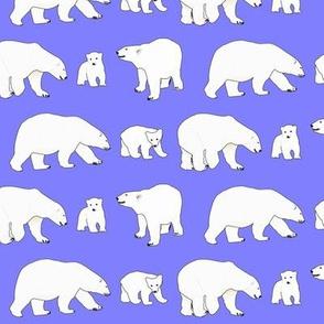 Line of Polar bears on purple