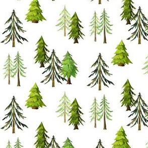 Pine Tree Forest - Woodland Trees SMALL SCALE C