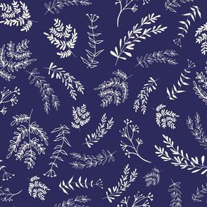 twig blue