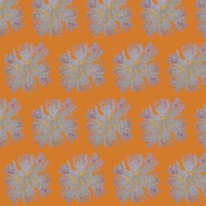 Protea Floral (Orange)