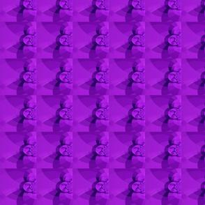 optic purple-ed