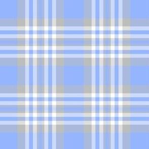 Blue Gray Grey Plaid Gingham Check