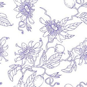 Passionflower in Purple