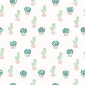 Spring2018 Cactus 1