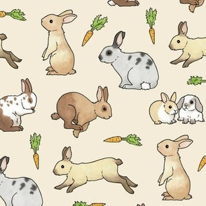 Rabbits - larger scale