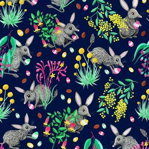 Australian Easter Bilby Egg Hunt - Navy [Release Date: May 2018]