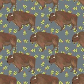 Bison prairie