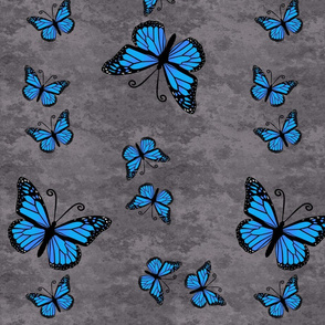 Monarch Butterflies Blue on Gray Granite