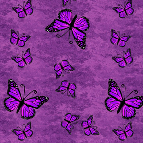 Monarch Butterflies All Purple on Purple Granite