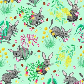 Australian Easter Bilby Egg Hunt - Mint [Release Date: May 2018]