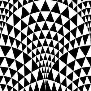 07165983 : scaletri : black + white