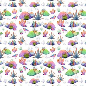 My Kaleidoscopic Rock Garden 2