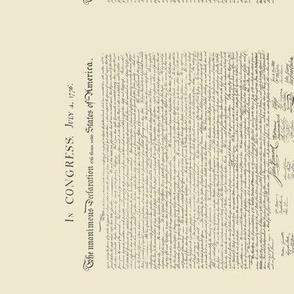 "10.5""x12"" (16/yard) declaration of independence, sideways"