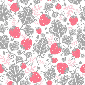 Pink And Gray Strawberries