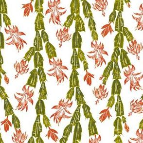 autumn Christmas cactus on white