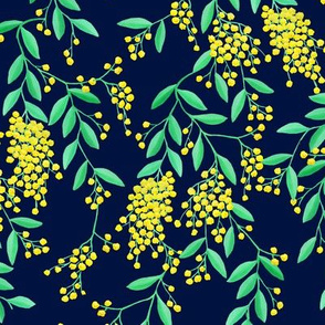 Golden Wattle | Australian Flowers | Acacia | Navy