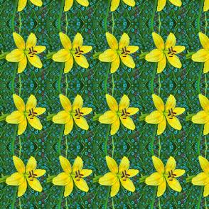 Yellow Rain Day Lily