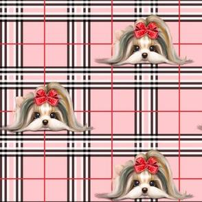 Parti-Biewer-Yorkie Plaid pink M