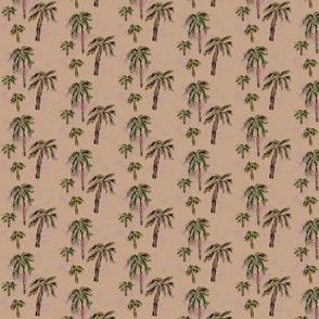Sandy Palms
