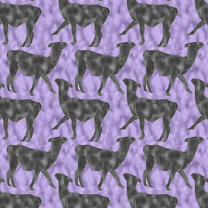 Small Moody Mod Llamas - pewter purple