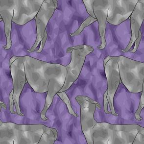 Moody Mod Llamas - silver violet