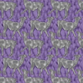 Small Moody Mod Llamas - silver violet