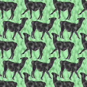 Small Moody Mod Llamas - graphite medow