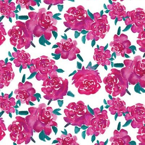 Valentines Day Roses on White