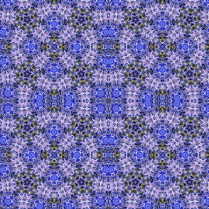Water Kaleidoscope-2
