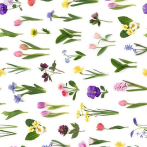 rainbow of spring flowers Spoonflower limited edition tea towel